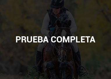 PRUEBA_COMPLETAH
